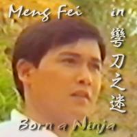 Meng Fei in 彎刀之迷 Born a Ninja 孟飛城